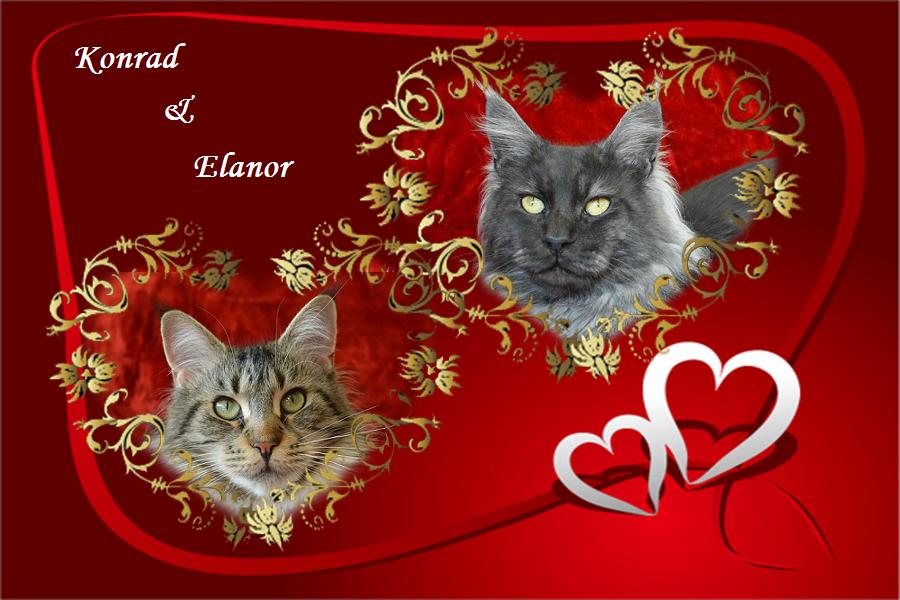 kép Elanor+Konrad+név